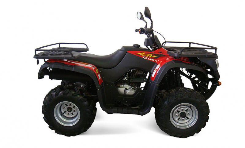 FR 250 HOT BEAR