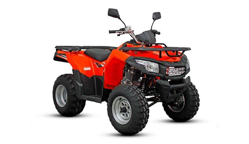 GFT 200